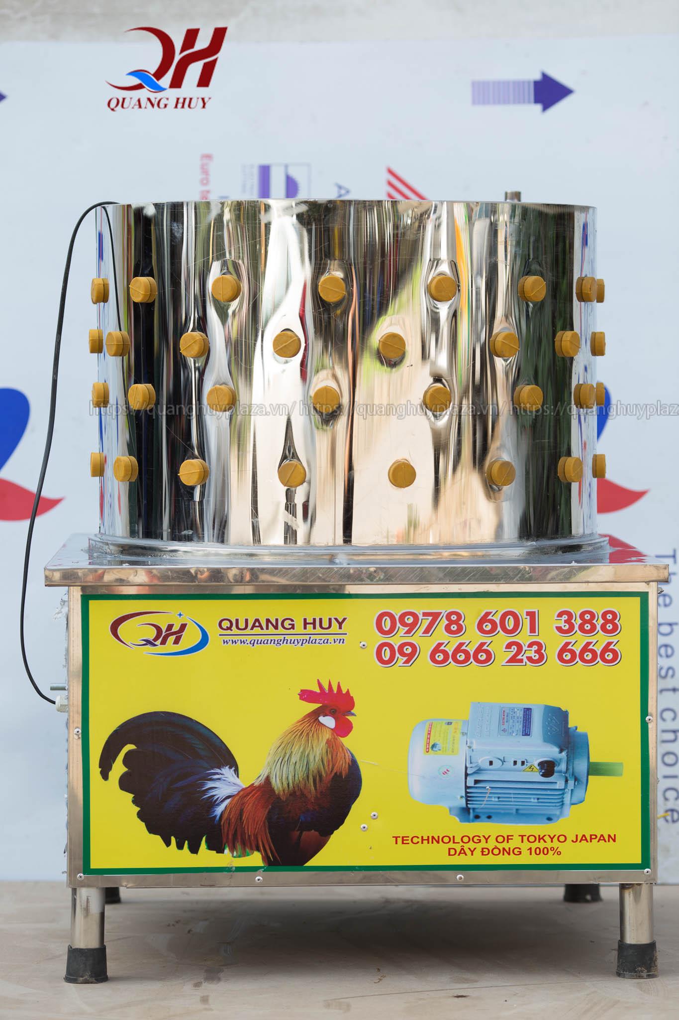 Có nhiều câu hỏi đặt ra cho máy vặt lông gà