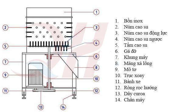 Cấu tạo máy vặt lông gà vịt