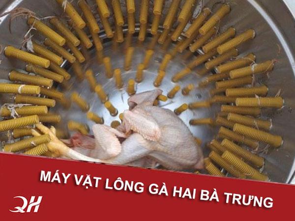 Bán máy vặt lông gà vịt Quang Huy tại Hai Bà Trưng