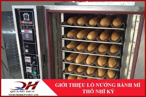 Lò Nướng Bánh Mì Thổ Nhĩ Kỳ Quang Huy -1