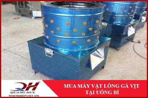 Mua Máy Vặt Lông Gà Vịt Tại Uông Bí -1