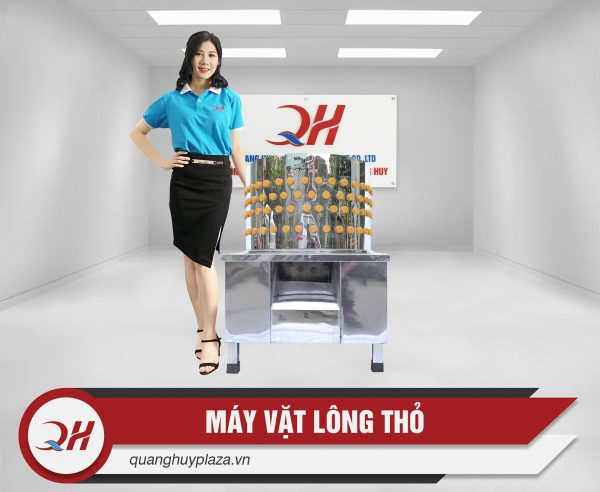 may-vat-long-moi-quang-huy