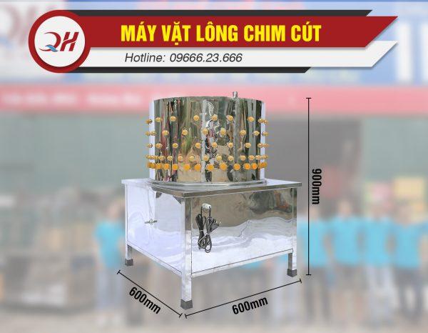 ma-vat-long-chim-cut-1