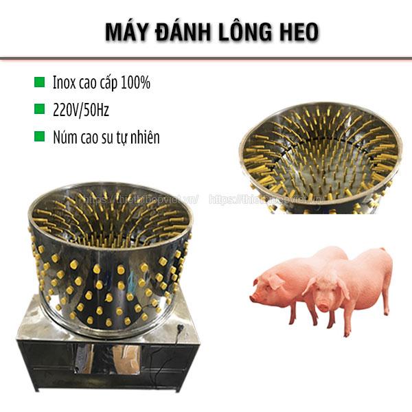Máy đánh lông heo lợn Quang Huy