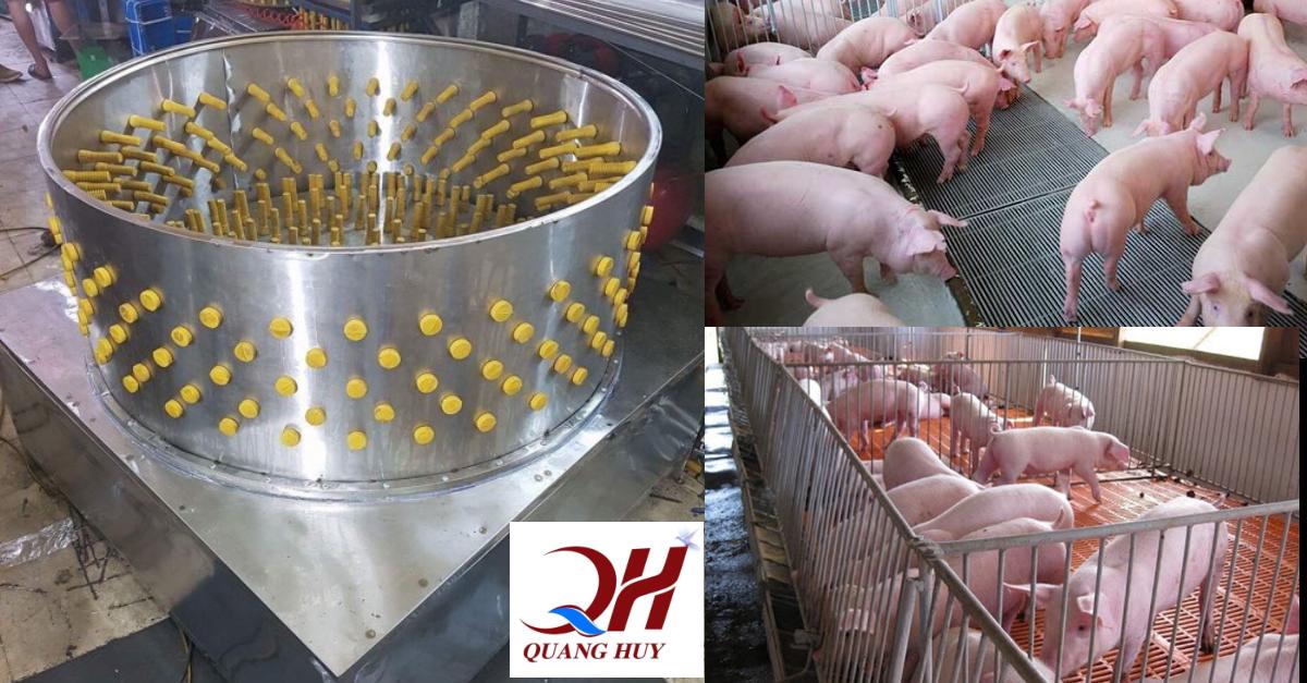 Kết quả hình ảnh cho máy làm lông lợn Quang Huy