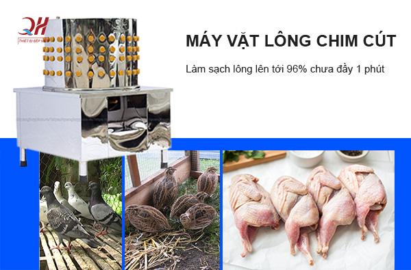 Máy vặt lông chim cút Quang Huy
