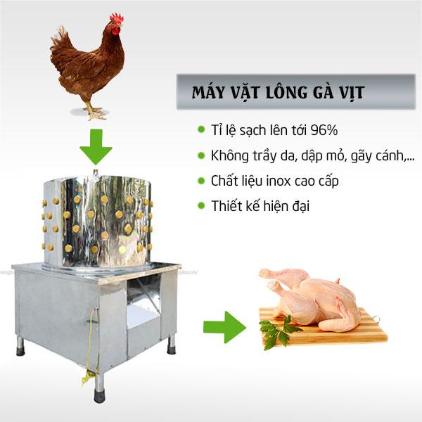 Công dụng nổi bật của máy làm lông gà