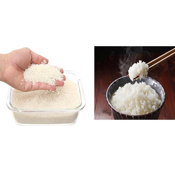 Bạn có biết 1 kg gạo nấu được bao nhiêu kg cơm không?